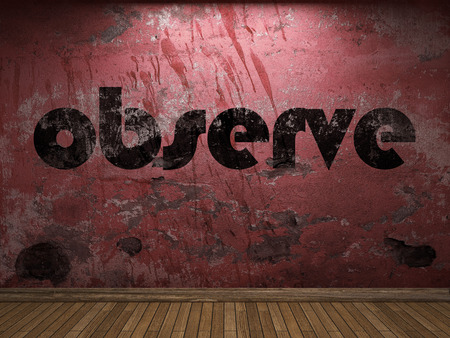 observe: observe word on red wall