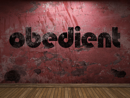obedient: obedient word on red wall Stock Photo