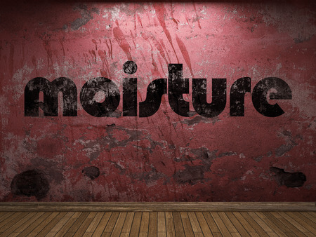 moisture: moisture word on red wall