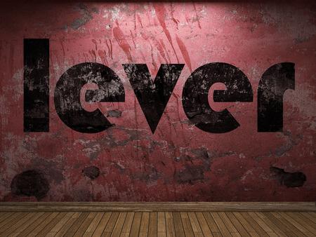 palanca: palabra palanca en la pared roja