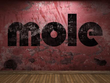mole: mole word on red wall