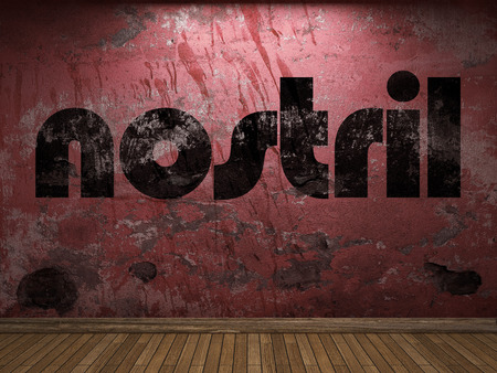nostril: nostril word on red wall