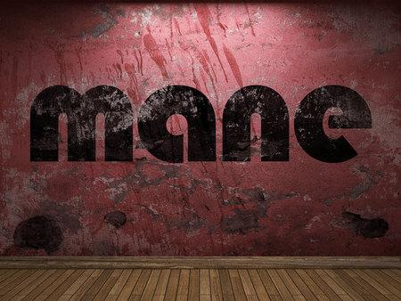 mane: mane word on red wall