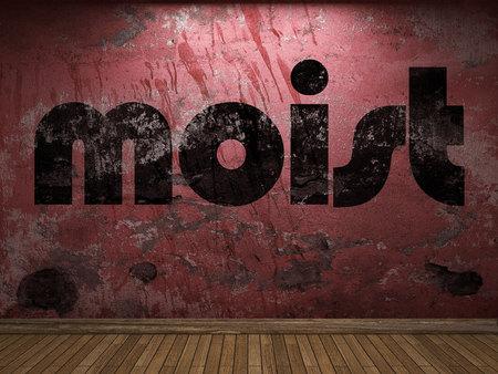 moist: moist word on red wall