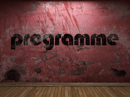 programme: programme word on red wall