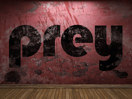 prey: prey word on red wall Stock Photo