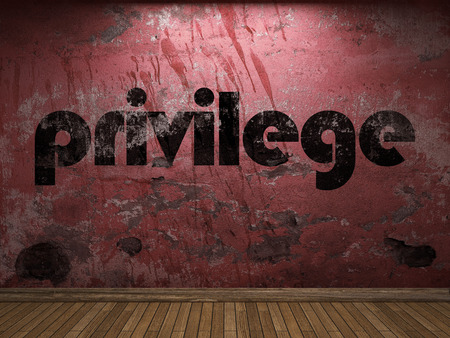 privilege: privilege word on red wall Stock Photo