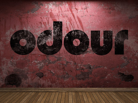odour: odour word on red wall Stock Photo