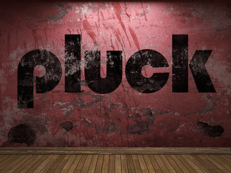 pluck: pluck word on red wall