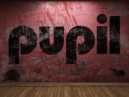 pupil: pupil word on red wall