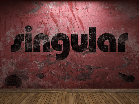singular: singular word on red wall