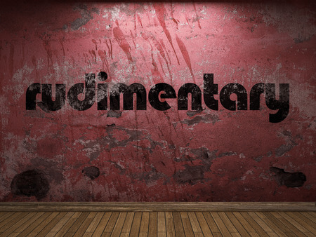 rudimentary: rudimentary word on red wall