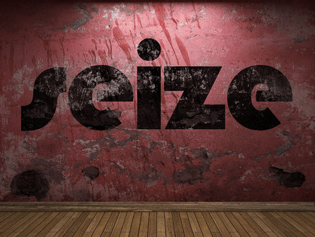 seize: seize word on red wall