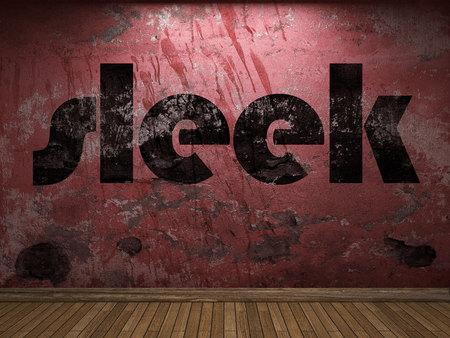 sleek: sleek word on red wall