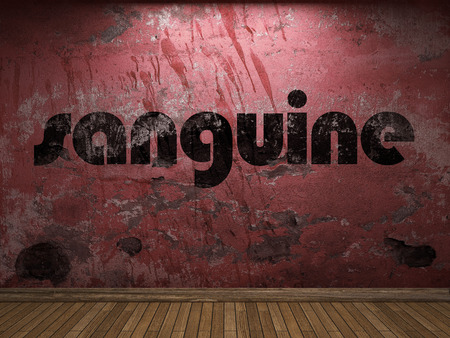 sanguine: sanguine word on red wall