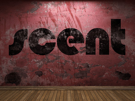 scent: scent word on red wall
