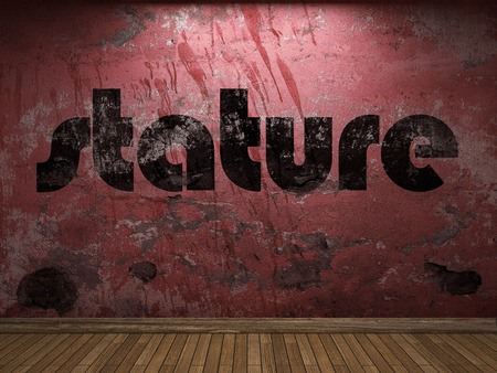 stature: stature word on red wall