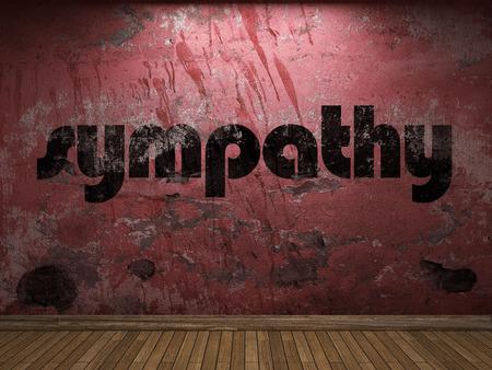 sympathy: sympathy word on red wall