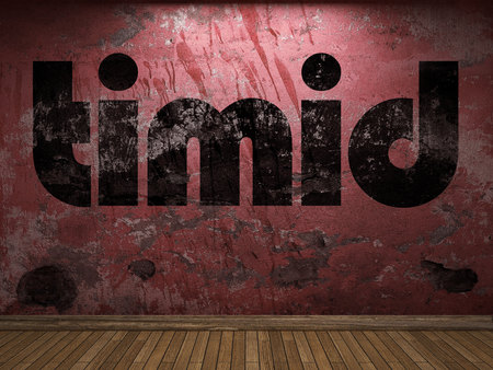 timid: timid word on red wall