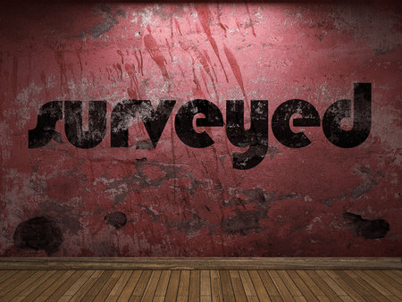 surveyed word on red wall