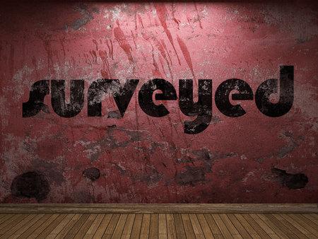 surveyed: surveyed word on red wall