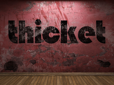 the thicket: thicket word on red wall Stock Photo