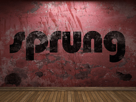 sprung: sprung word on red wall