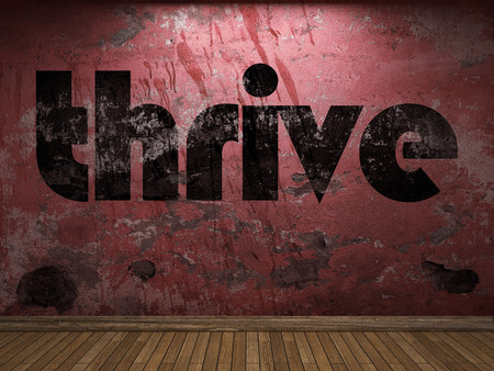 to thrive: thrive word on red wall Stock Photo