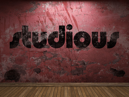 studious: studious word on red wall