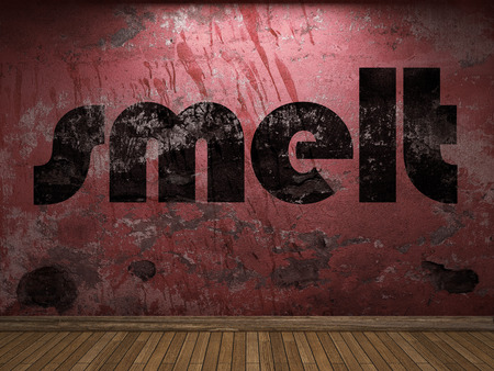 smelt: smelt word on red wall