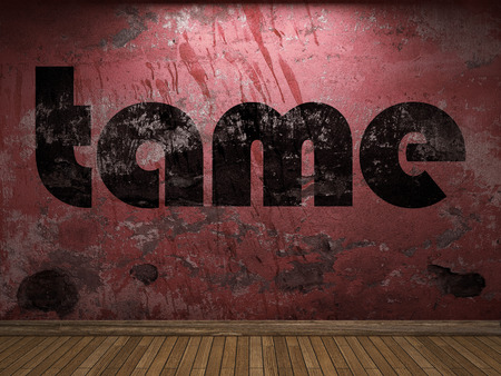 tame: tame word on red wall