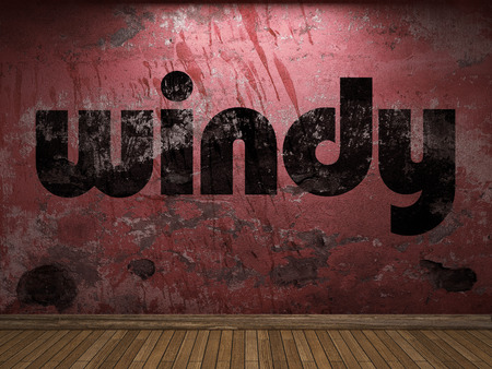 windy: windy word on red wall