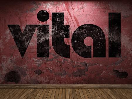vital: vital word on red wall