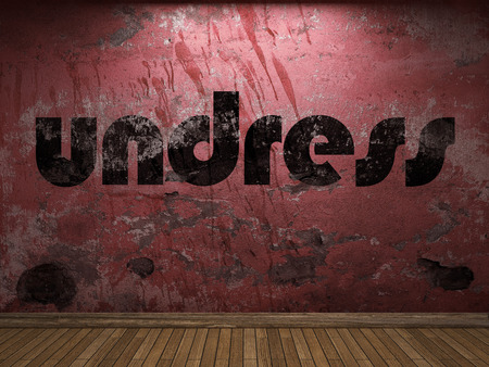 undress: undress word on red wall