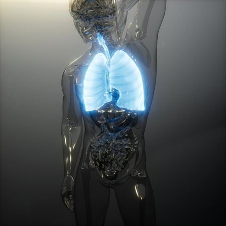 science anatomy scan of human lungs glowing Stock Photo - 123259884