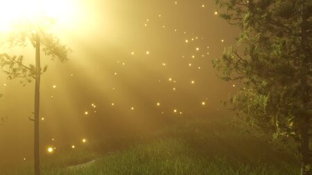 magical forest with sparkles at night