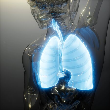 science anatomy scan of human lungs glowing Stockfoto - 129681791