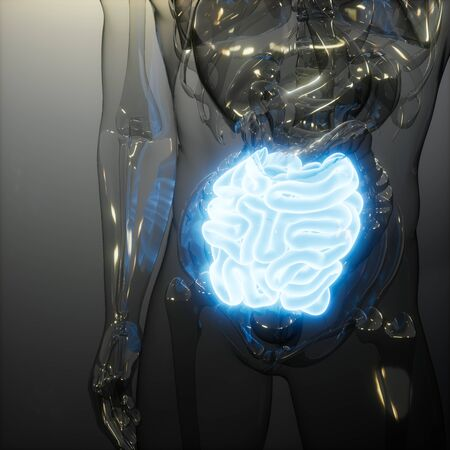 science anatomy scan of human small intestine glowing