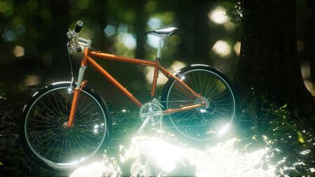 Mountain bike on the forest path