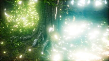 firefly flying in green forest