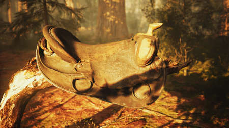 vintage Leather horse saddle on the dead tree in forest at sunset Standard-Bild