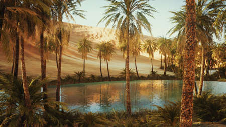 oasis with palm trees in desert