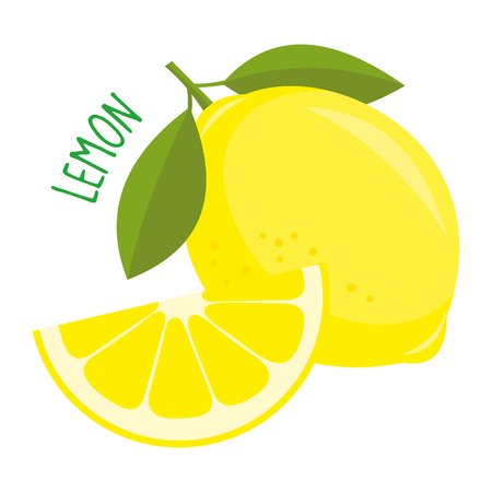 Lemon vector illustration isolated Illustration