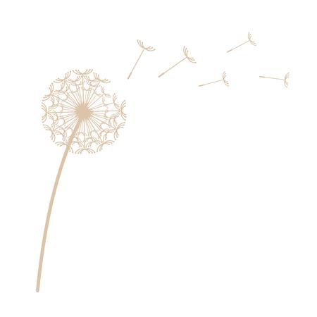 Dandelion vector illustration Vettoriali