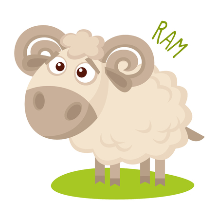 Ram Vector illustration isolated on white background