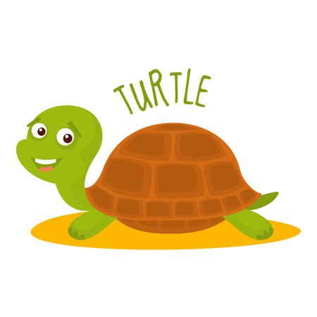 Turtle Vector illustration isolated on white background
