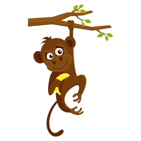 Wild animals. Monkey Wildlife Vector illustration isolated on white background Illusztráció