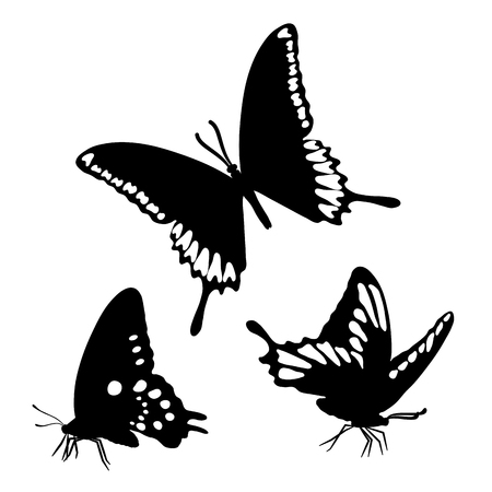 Black Silhouettes Butterflies Isolated White Background Vector illustration Vinyl Wall Stickers