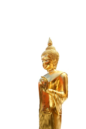 The golden buddha staue isolated