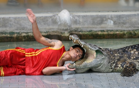 CHONBURI, THAILAND � DECEMBER 4: A man puts his head in crocodile